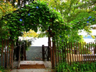 How To Build A Gate For Your Own Driveway At Homediy Guides