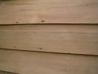 How to clean exterior sidingdiy guidesdiy guides for Removing mold from exterior wood siding